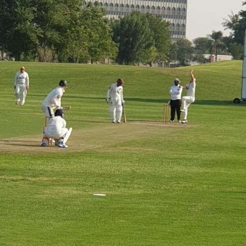 Emirates Palace Cricket fielding